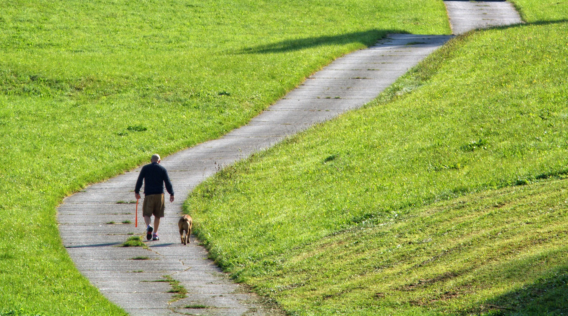 Man and dog walking a path in a park